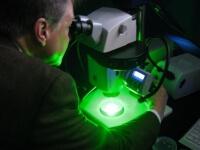 Туберкулез в Новгородском регионе уже пятнадцать лет лечится на основе использования нанотехнологий